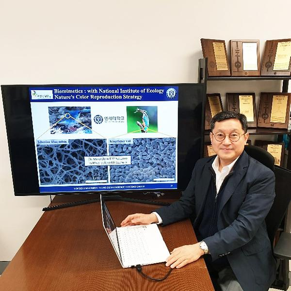 Major international grant demonstrates Yonsei's excellence in nanostructure research